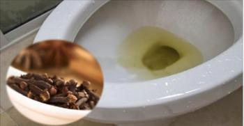 O banheiro costuma ser a parte da casa que mais exige limpeza
