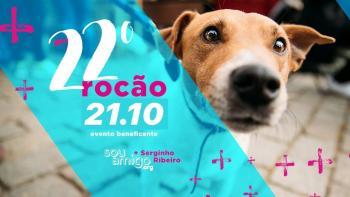 O maior festival de rock beneficente do Paraná vai rolar no dia 21 de outubro, na Praça do Country,