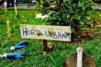 Hortas urbanas: uma revolução gentil e orgânica!
