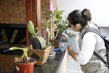 Controle de Endemias divulga resultado 1º ciclo de Liraa do Município de Cascavel em 2019