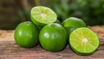 Receita de limão antes de dormir ajuda com dores nas costas e articulações